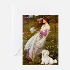 Windflowers / Coton Greeting Cards (Pk of 10)