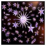 Sparkling Stars Wall Art