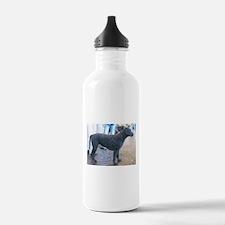 curly coated retriever full Water Bottle