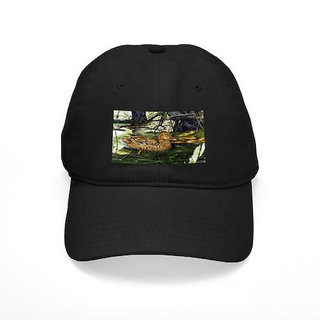 Mallard on the River Black Cap