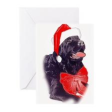 Santa Newf Greeting Cards
