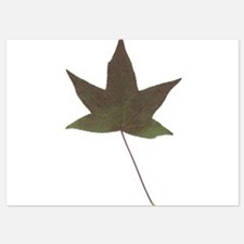 Autumn Fall Seasonal Leaf Invitations