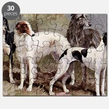 Sighthounds Puzzle