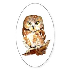 Watercolor Saw Whet Cute Little Owl Decal