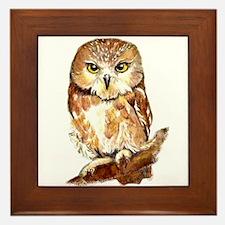 Watercolor Saw Whet Cute Little Owl Framed Tile