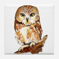 Watercolor Saw Whet Cute Little Owl Tile Coaster