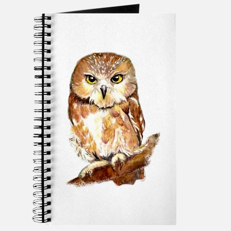 Watercolor Saw Whet Cute Little Owl Journal