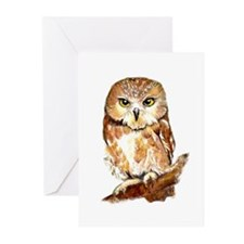 Watercolor Saw Whet Cute Little Owl Greeting Cards