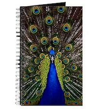 Peacock bird Journal