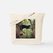 Black Cat Birdhouse Tote Bag