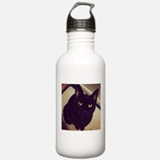 Black Cat Watching You Water Bottle