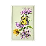 Bergamot & Butterfly Rectangle Magnet (10 pack)