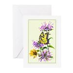 Bergamot & Butterfly Greeting Cards (Pk of 10)