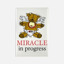 Boy Bear Miracle Rectangle Magnet