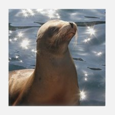 Sparkling Sea Lion Tile Coaster