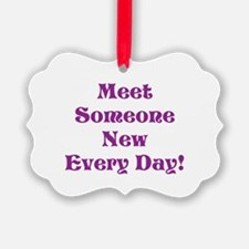 Meet Someone New Every Day Ornament