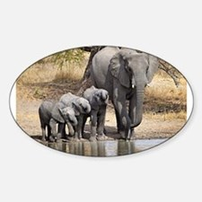 Elephant mom and babies Decal