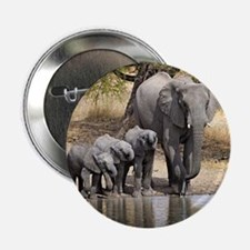 "Elephant mom and babies 2.25"" Button (10 pack)"