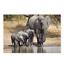 Elephant mom and babies Postcards (Package of 8)