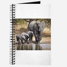 Elephant mom and babies Journal
