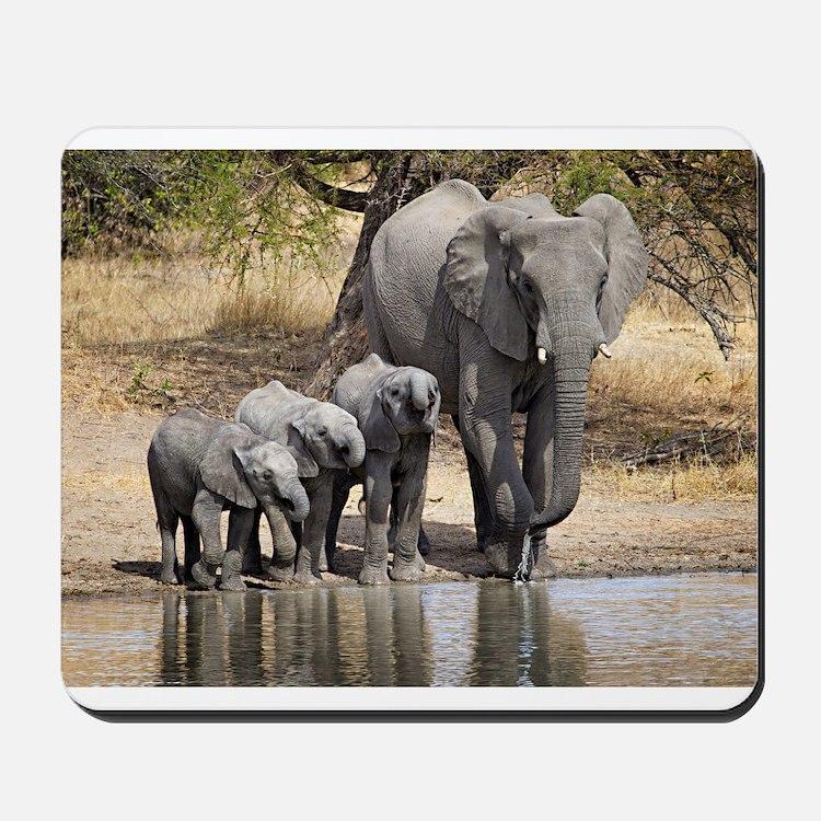 Elephant mom and babies Mousepad