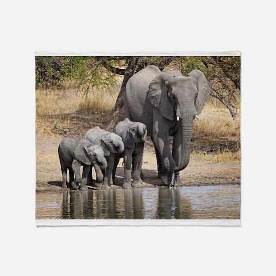 Elephant mom and babies Throw Blanket