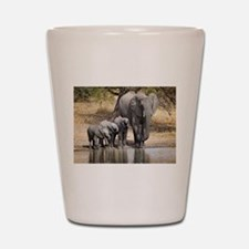 Elephant mom and babies Shot Glass