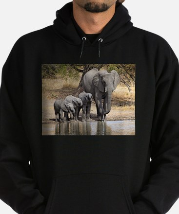 Elephant mom and babies Hoodie