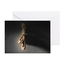 Pointe Shoes Ballet Greeting Cards