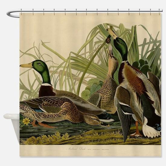 Mallard duck Audubon Bird Vintage Print Shower Cur