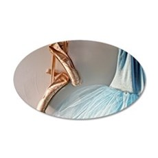 Blue Ballet Tutu Costume and Worn Pointe Shoes Wal