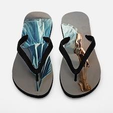 Blue Ballet Tutu Costume and Worn Point Flip Flops