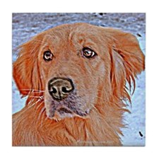 GOLDEN RETRIEVER ART WINTER PORTRAIT Tile Coaster