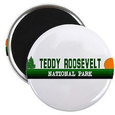 """Teddy Roosevelt National Park 2.25"""" Magnet (100 pa"""