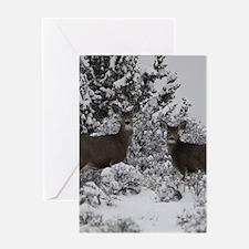 Mule Deer in the Oregon Snow Greeting Cards