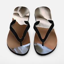 Backside Of A Woman Flip Flops