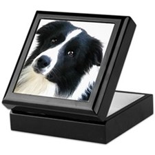BORDER COLLIE HEAD STUDY MALE Keepsake Box