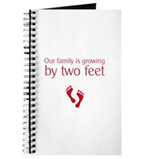 Growing by two feet Journal