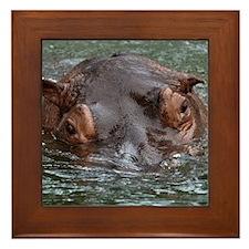 Hippo 8879 Framed Tile