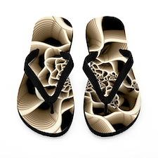 Frail Flip Flops