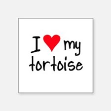 ihearttortoise Sticker
