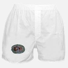 Hippo 8879 Boxer Shorts