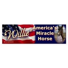 """WILLIE"" Bumper Bumper Sticker"