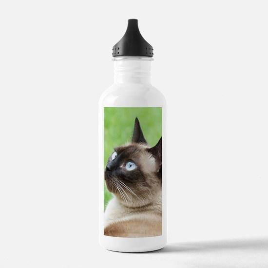 Siamese Cat Water Bottle