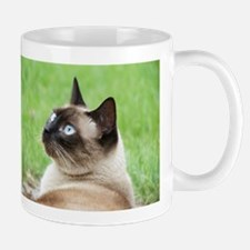 Siamese Cat Mugs