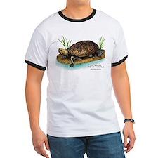 Japanese Pond Turtle T
