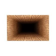 Hieroglyphic Pit 3'x5' Area Rug