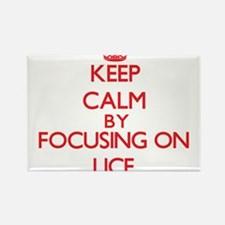 Keep Calm by focusing on Lice Magnets