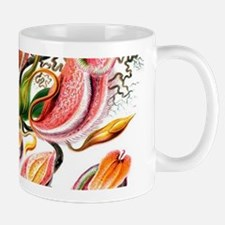 Botanical Hand Drawn Pitcher Plants Mugs