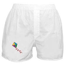 Colorful Kite Boxer Shorts